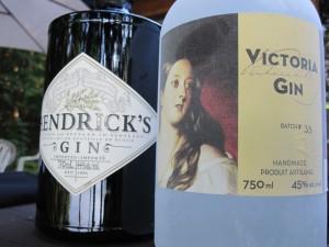 Gin or Gin