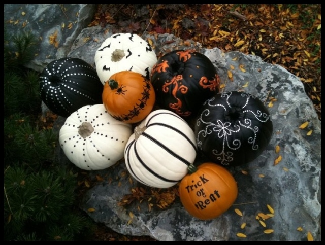 Lyndsay's Pumpkin Patch